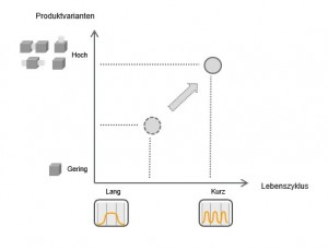 Varianten_Lebenszyklus